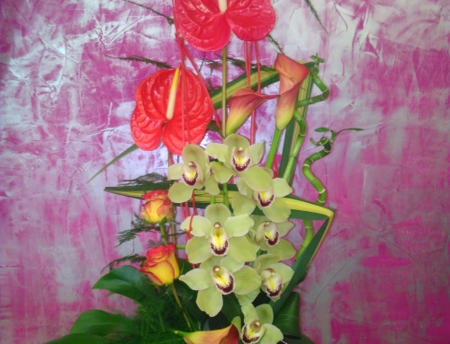 COMPOSITION ANTHURIUM