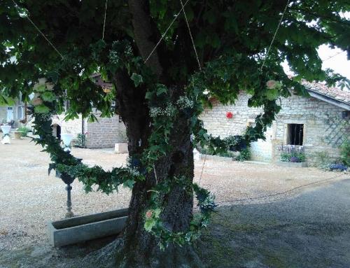 Cadres champêtres pour photos de mariage